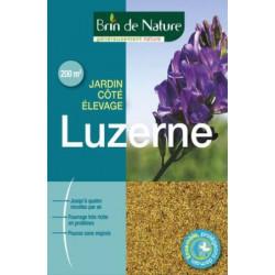 Luzerne Brin de Nature