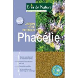 Phacelie Brin de Nature